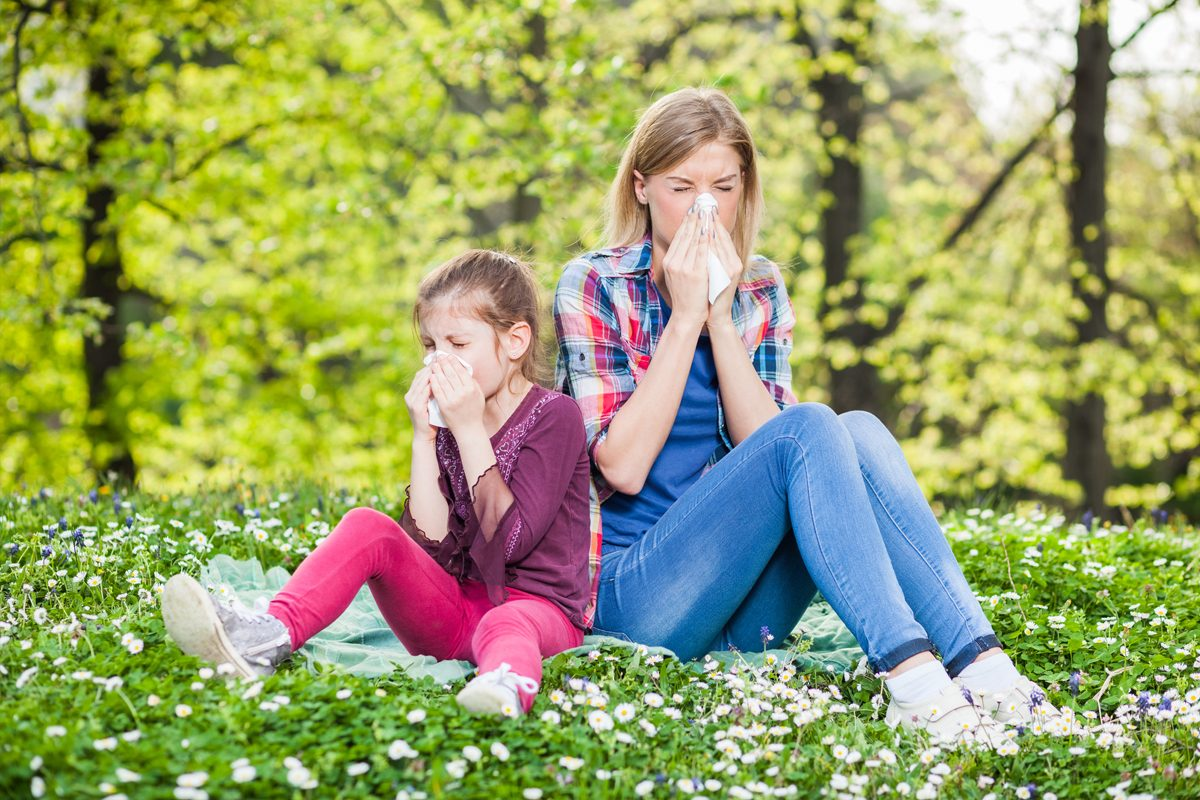 Alergiile de primavara: Manifestari si tratamente