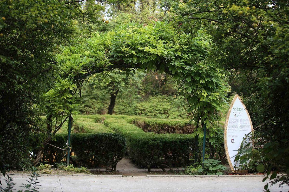 Secom® ne invita la o plimbare prin Gradina cu Remedii din Gradina Botanica Bucuresti