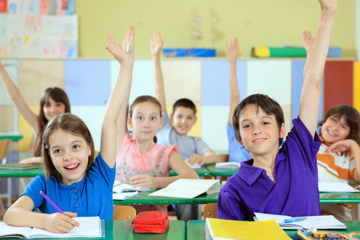 Scoala Gimnaziala Nr. 5 din Bucuresti: O noua abordare pentru copiii supradotati