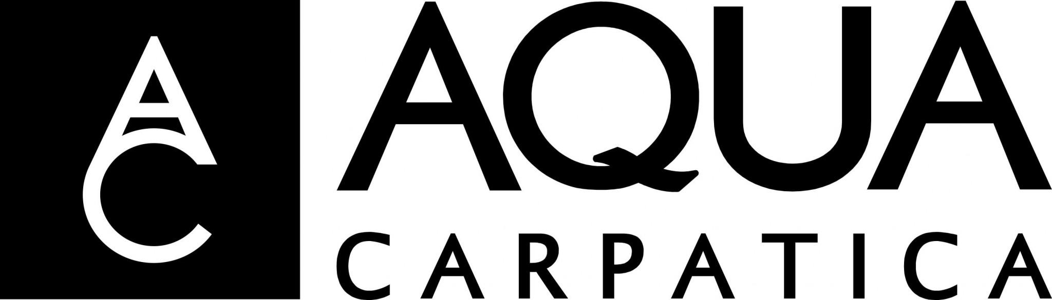 logo black aqua