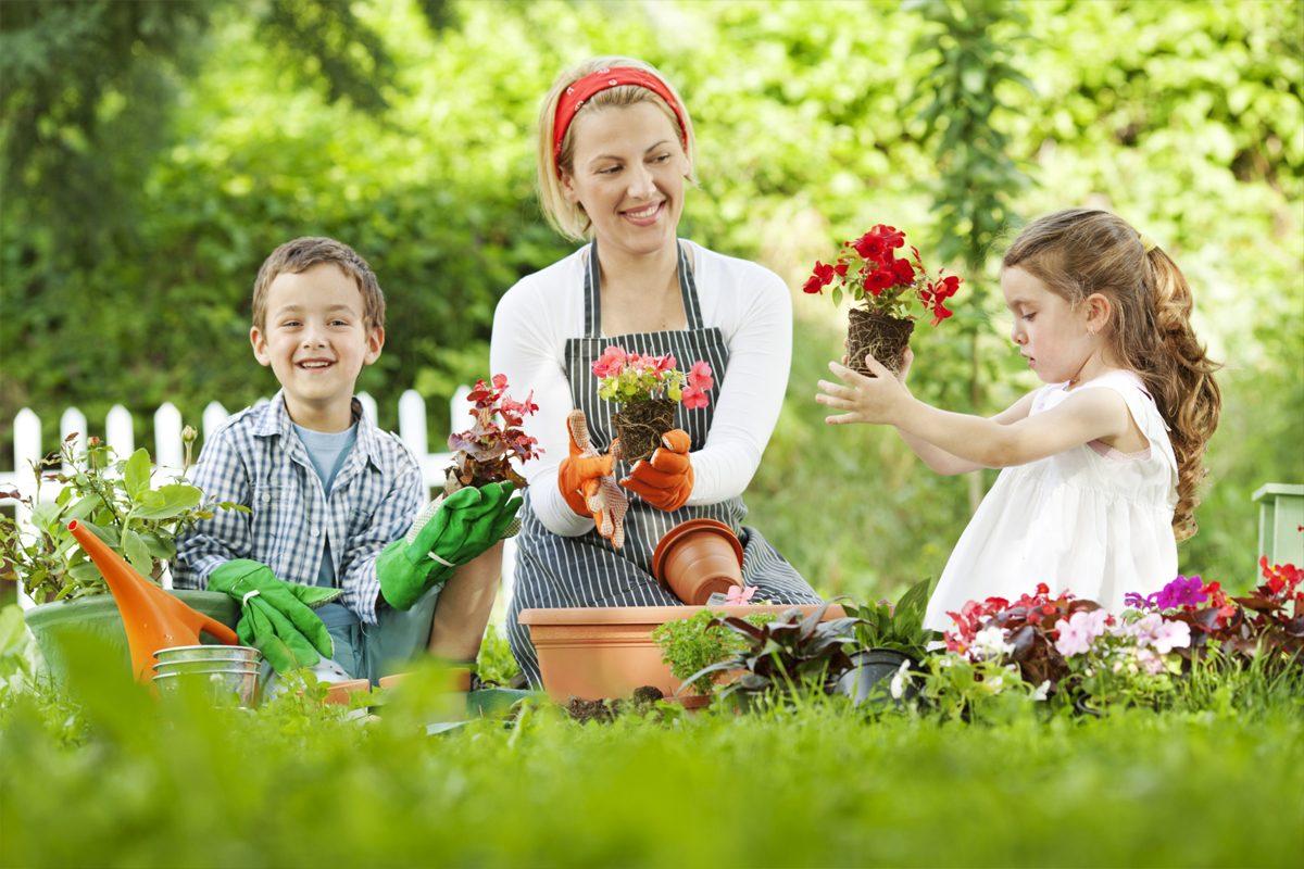 Idei de activitati de educatie ecologica pentru copii