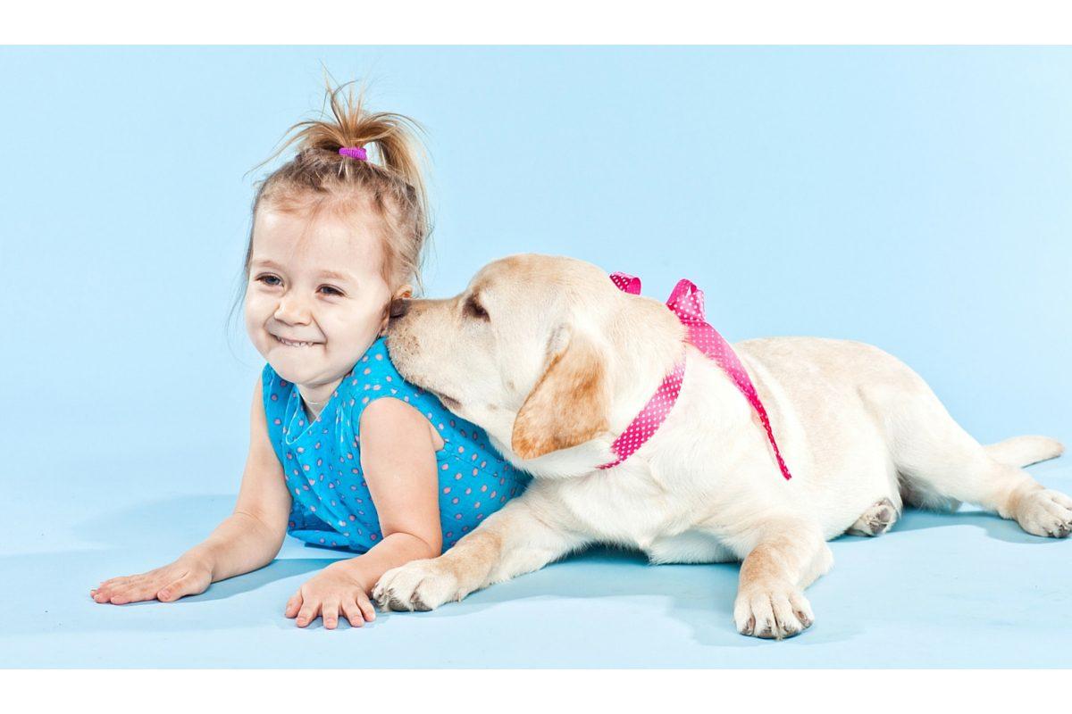 Cum evitam riscul de imbolnavire de la animale de companie?