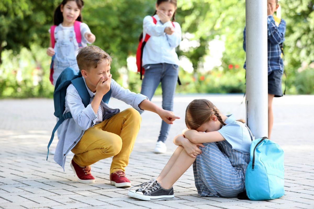 Bullying-ul pe intelesul tuturor. Ce urmeaza dupa adoptarea normelor de aplicare a legii anti-bullying?